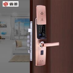 霸菱指纹刷卡锁家用密码刷卡门锁入户门指纹锁密码锁ZF-26 琥珀金