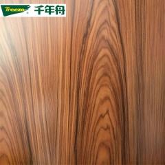 千年舟E0级18mm 实木芯免漆板生态板家具衣柜书柜板材 德国影木