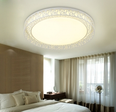 圆形LED创意个性鸟巢吸顶灯 现代简约客厅灯温馨卧室书房无极灯具 直径83cm配LED三色调光