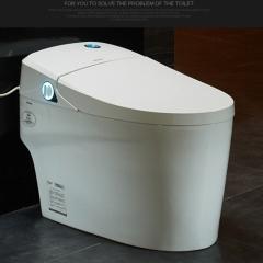 法恩莎全自动智能马桶家用多功能电动坐便器自动冲水加热FB16165 坑距305