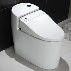 智能马桶全自动智能马桶坐便器AR-819801 咨询客服