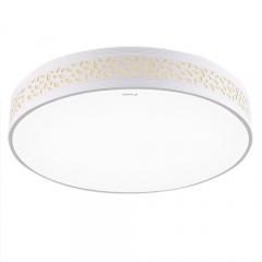 欧普照明led圆形吸顶灯卧室客厅灯具 LED调光调色送遥控器32瓦
