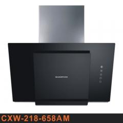 双泰厨电CXW-218-658AM 大吸力大风量抽油烟机 正品特价