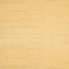 自然色硅藻泥涂装客厅卧室儿童房电视背景墙辊涂喷涂墙面硅藻泥布纹 可定制(定金)