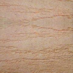 自然色硅藻泥涂装客厅卧室儿童房电视背景墙辊涂喷涂墙面泥如松 可定制(定金)