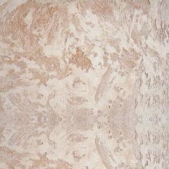 自然色硅藻泥涂装客厅卧室儿童房电视背景墙辊涂喷涂墙面乱石纹 可定制(定金)
