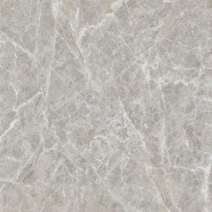 能强陶瓷大理石地砖墙砖客厅地砖CH-A8210意大利帕斯高灰 800*800
