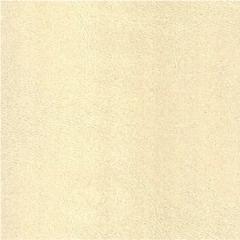 时代1+1吊顶   云时代系列皮纹亚白墙面板Y020601-050 Y020601-050