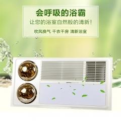 奥普浴霸风暖 换气集成吊顶浴霸 多功能浴霸灯暖风暖浴霸HDP2325B 300x600(免费安装)
